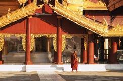 Jeune moine birman dans la pagoda de Shwezigon, Bagan Photos stock