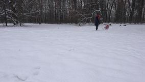 Jeune mère avec la fille de bébé dans le traîneau en bois neigeux dans l'horaire d'hiver 4K banque de vidéos