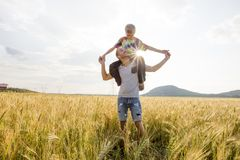 Jeune père avec son petit fils marchant dans le domaine de blé au coucher du soleil dans un jour d'été chaud Photographie stock