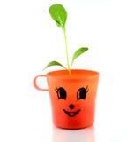 Jeune plante verte d'isolement Images libres de droits