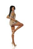 Jeune pose de femme d'Afro-américain Image libre de droits