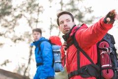 Jeune randonneur masculin montrant quelque chose à l'ami dans la forêt Photographie stock