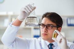 Jeune scientifique de chercheur faisant un expe de contamination d'essai d'eau photo stock