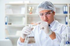 Jeune scientifique de chercheur faisant un expe de contamination d'essai d'eau image libre de droits