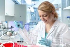 Jeune scientifique féminin européen ou technologie image stock