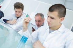 Jeune scientifique observant le réactif liquide dans le laboratoire photographie stock
