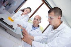 Jeune scientifique pesant le becher sur les échelles électroniques images libres de droits