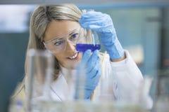 Jeune scientifique travaillant dans le laboratoire photos libres de droits