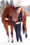 Jeune support de fille de cavalier avec le cheval en parc d'hiver Photos libres de droits