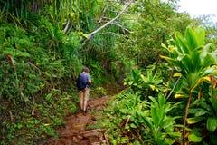 Jeune touriste masculin trimardant sur la traînée célèbre de Kalalau le long de la côte de Na Pali de l'île de Kauai Photographie stock libre de droits