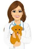 Jeune vétérinaire féminin attirant étreignant le petit chien mignon illustration libre de droits