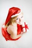 Jeune verticale de fille de blondie photo libre de droits