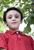 Jeune verticale de garçon image libre de droits