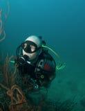 Jeune verticale mâle de plongeur autonome Photo libre de droits