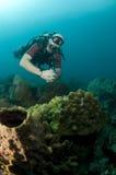 Jeune verticale mâle de plongeur autonome Images libres de droits