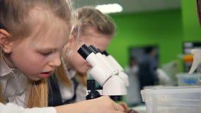 Jeunes élèves d'école dans le laboratoire de recherches d'école regardant dans le microscope banque de vidéos