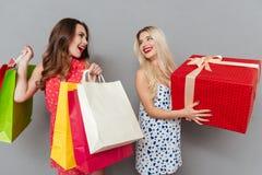 Jeunes étonnants deux amies de dames avec des paniers Image libre de droits