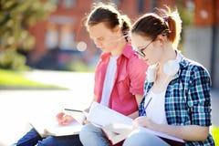 Jeunes étudiants heureux avec des livres et des notes dehors Photographie stock libre de droits