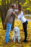 Jeunes ajouter à un chien dans la forêt d'automne Photo libre de droits
