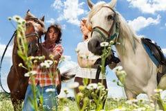 Jeunes ajouter aux chevaux regardant l'un l'autre Photographie stock