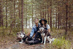 Jeunes ajouter aux chiens dans la forêt Photographie stock