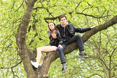 Jeunes amants s'asseyant dans une couronne d'un arbre Photographie stock libre de droits