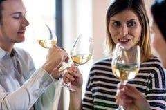 Jeunes amis buvant du vin Photo libre de droits