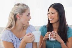 Jeunes amis causant au-dessus des tasses de café Image libre de droits