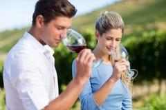 Jeunes amis de sourire sentant le vin en verres Photos stock