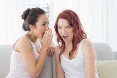 Jeunes amis féminins bavardant dans le salon Images stock