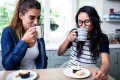 Jeunes amis féminins buvant du café à la table Photos stock