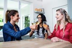 Jeunes amis féminins heureux grillant le verre à vin Photographie stock