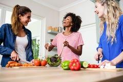 Jeunes amis féminins riant tout en préparant la nourriture Images stock