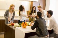 Jeunes amis grillant avec du vin blanc Photo libre de droits