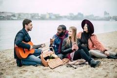Jeunes amis heureux avec la guitare au pique-nique Photos libres de droits