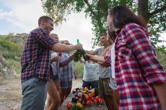 Jeunes amis heureux ayant le pique-nique dans le parc Les amis boivent de la bière sur un pique-nique d'été en parc La meilleure  Photo libre de droits