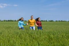 Jeunes amis heureux courant sur le champ de blé vert Images libres de droits