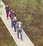 Jeunes amis heureux marchant dans la forêt et appréciant un bon automne Photographie stock