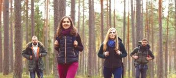 Jeunes amis heureux marchant dans la forêt et appréciant un bon automne Photos libres de droits