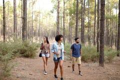 Jeunes amis marchant par une forêt Photographie stock libre de droits