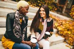 Jeunes amis multiraciaux en parc d'automne Photos stock