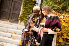 Jeunes amis multiraciaux marchant autour du parc d'automne Images stock