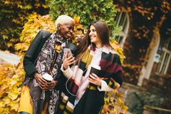 Jeunes amis multiraciaux marchant en parc d'automne Photo libre de droits