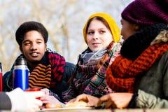 Jeunes amis parlant au pique-nique dehors en parc Photographie stock