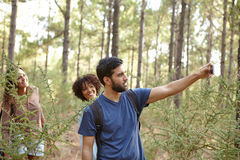 Jeunes amis prenant des photos dans la forêt Image stock