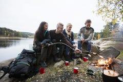 Jeunes amis rôtissant des guimauves au-dessus de feu de camp Photos libres de droits