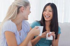 Jeunes amis rattrapant au-dessus des tasses de café Photos stock