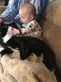 Jeunes amours de garçon sur le jeune chat Photo stock