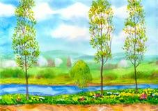 Jeunes arbres de peuplier sur le fleuve illustration stock