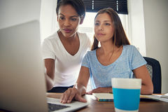 Jeunes associés féminins travaillant ensemble Images libres de droits